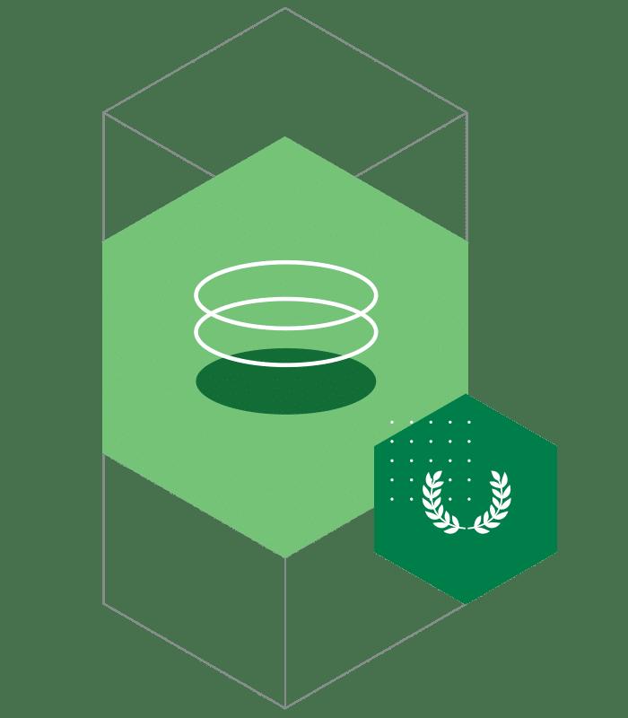 graphic database icon